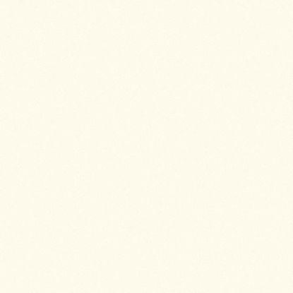 2109bs-ultrapas-slonova-kost