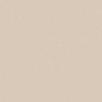 27045bs-ultrapas-sampanjec-vratni