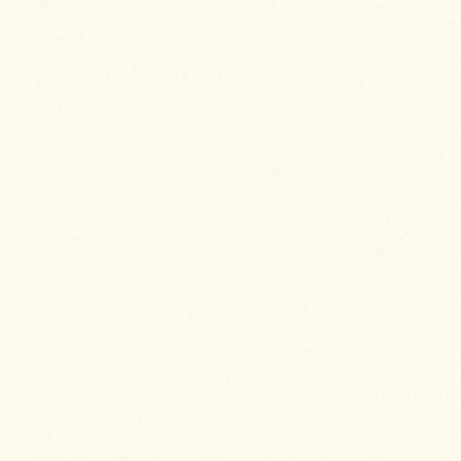 2109bs-iveral-slonova-kost