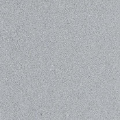 5881gt-iveral-metalik-sreb-siv-19mm